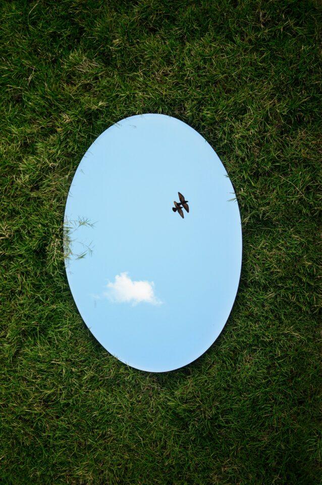 Ovalen spiegel in het gras toont vogels en een wolk in een blauwe lucht